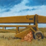 26-13 model with grader 14x42
