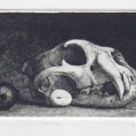 still life - etching 3.5x8.75